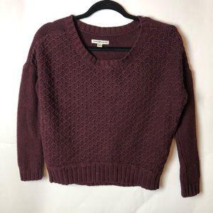 American Eagle Maroon Knit Sweater